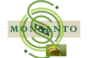 Seed wars: OSSI vs goliath Monsanto